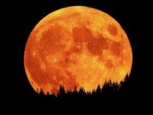 the-full-honey-moon-is-tonight